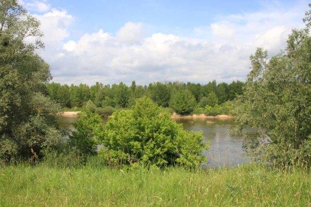 View from 'La Loire à Vélo'.