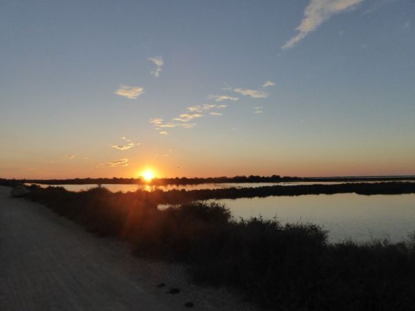 Sunset over the Camargue.