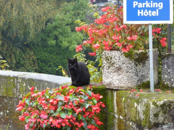 Cat guarding the bridge over La Vezere