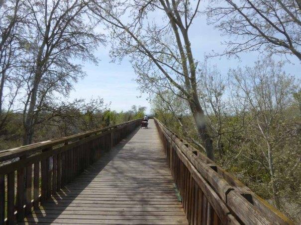 Bridge over La Muga