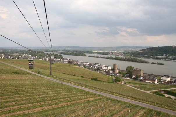 Rhine from the Cable Car