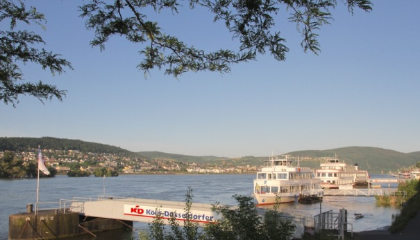 Early Morning on the Rhine