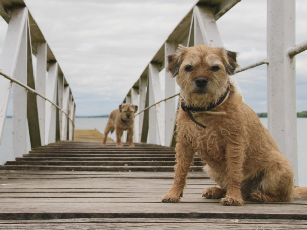 Penny and Colin guarding one of the Pontoons..