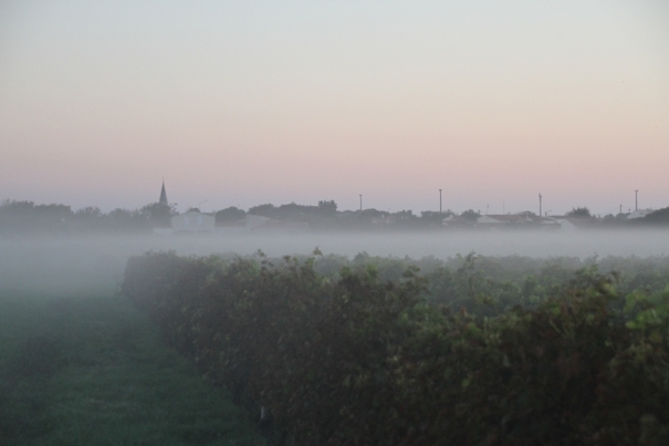 Dawn on the Ile d'Oleron