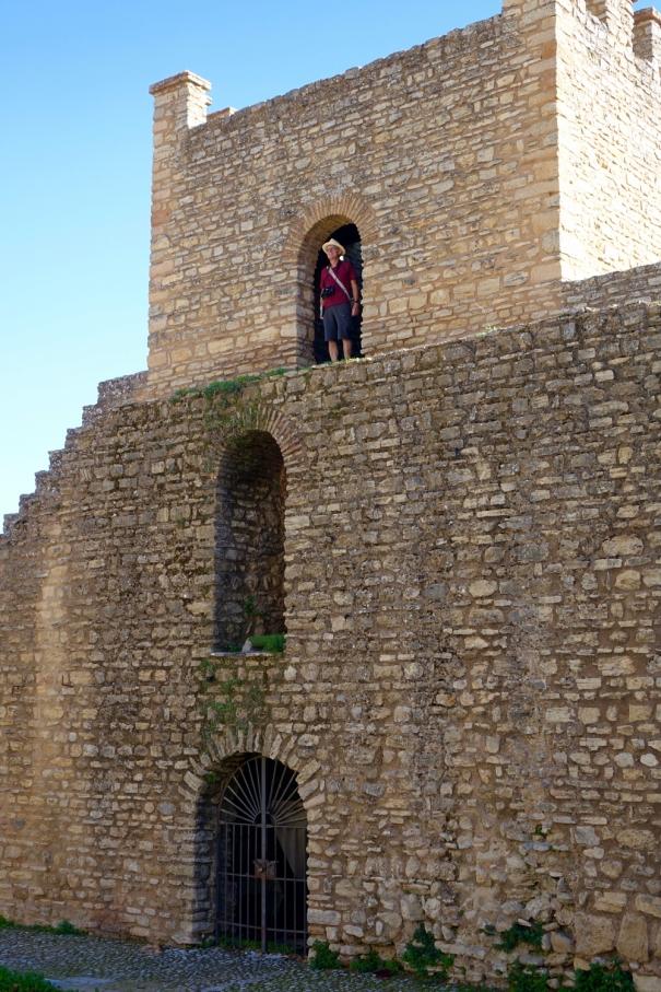 Xijara Walls