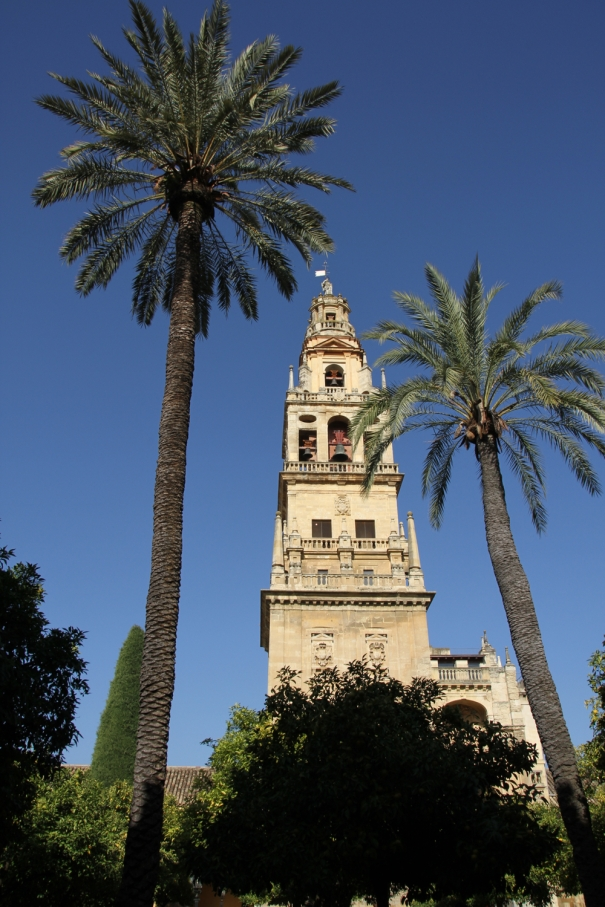 Bell tower of cathedral