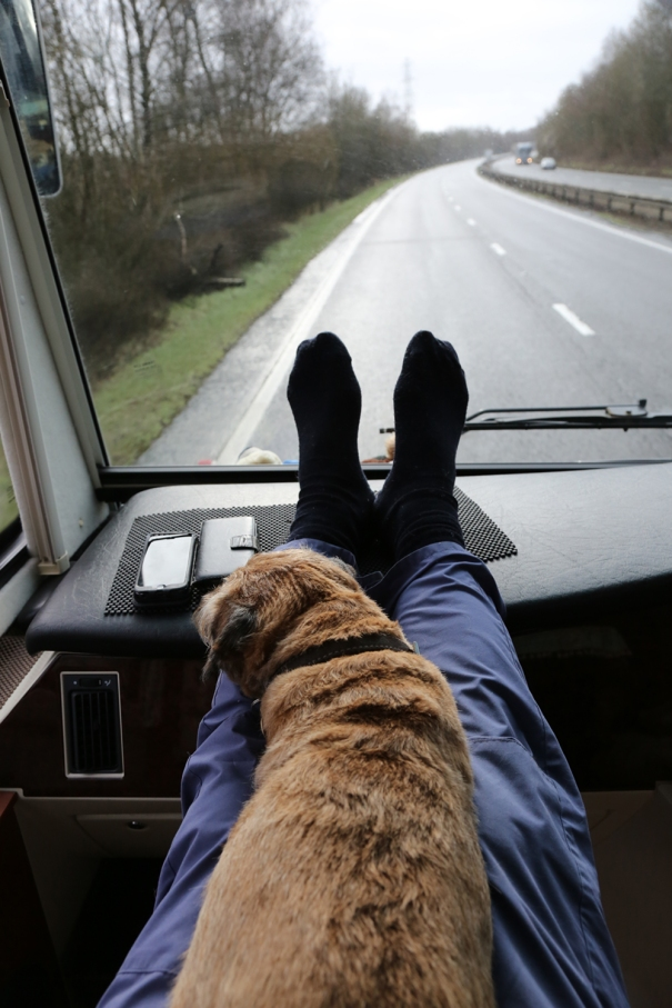 Travel Seat
